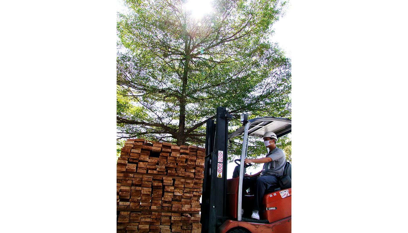product-wood_DSCF0753